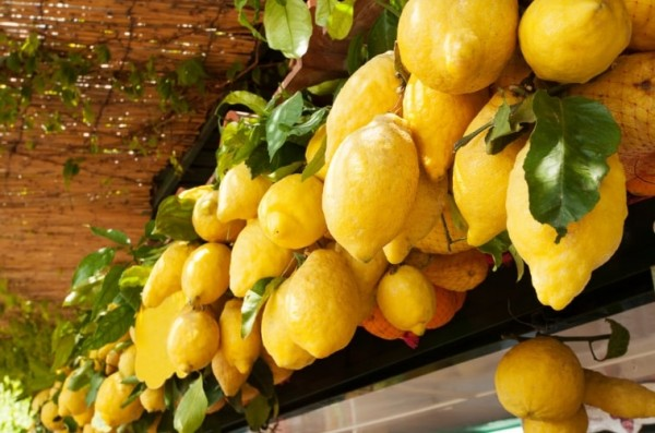 одним из которых является любимый всеми «Лимонный фестиваль»