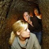 Подземный город в Неаполе и загадки Мальорки