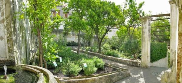В Салерно сохранился ботанический сад (Сад Минервы)
