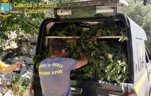 финансовая гвардия Сицилии изъяла марихуаны на 9 тонн марихуаны