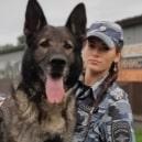 Генуя: Престижная итальянская премия «Собачья верность»