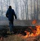 Неподалеку от Неаполя в скрытые камеры попал поджигатель леса