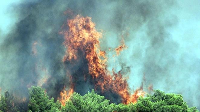 Пожары в Сардинии стали причиной эвакуации жителей и туристов