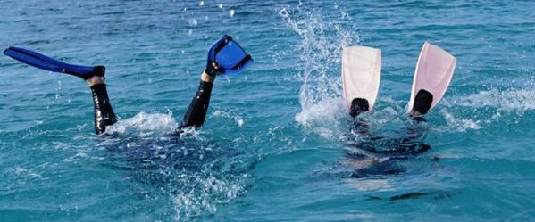 Италия, спорт: Finswimming (скоростное плавание)