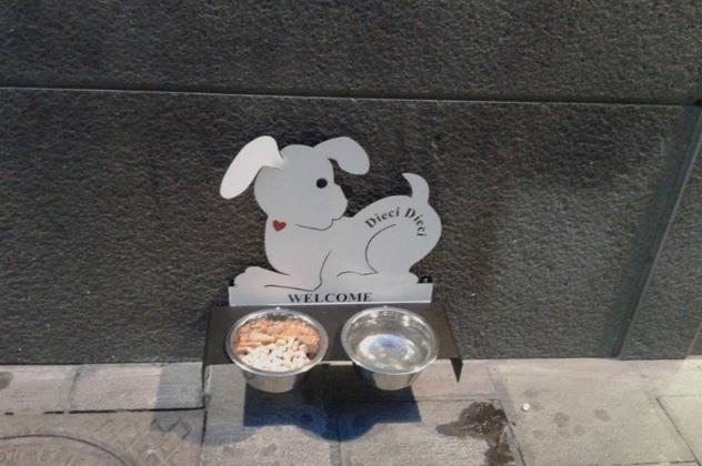 В Неаполе открывается первый бар для собак
