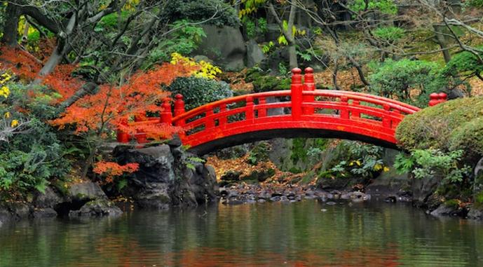 Японский сад в Риме с 30 октября снова открыт для публики