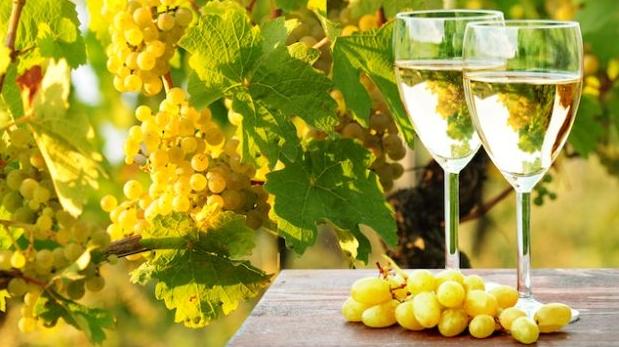 Виноделы не боятся снижения спроса на свою продукцию в России