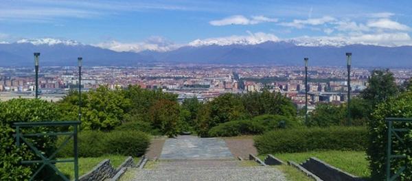 Турин станет зеленее, ожидается привоз 2000 деревьев