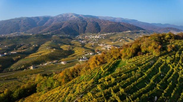 Город в провинции Тревизо станет новой столицей винной культуры Европы в 2016 году