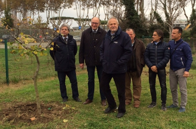 «Национальный день Деревьев»: возле Рима высажены новые саженцы
