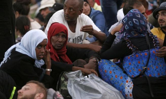Первые беженцы должны отправиться в Эстонию в конце января