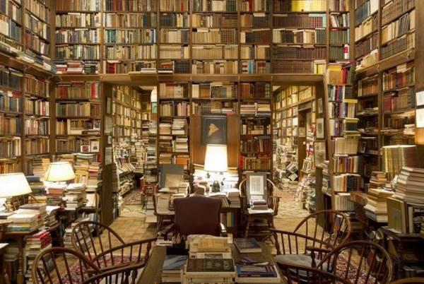 Болонский университет: архив сновидений