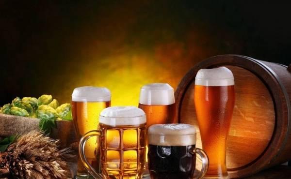 Итальянское пиво высоко оценили в Европе