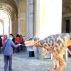 Неаполь. Королевский дворец в Портичи: прогулки с динозаврами