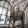 Гигантские лесные скульптуры покажут на выставке в Риме