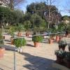 В Неаполе появился ботанический сад для незрячих