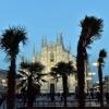 Возникли дебаты по поводу пальм в Милане
