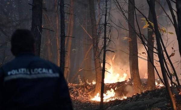Пожары в Пьемонте: чрезвычайная ситуация