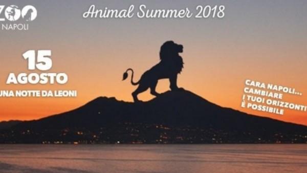 Летний сезон Неапольского зоопарка завершается в середине августа