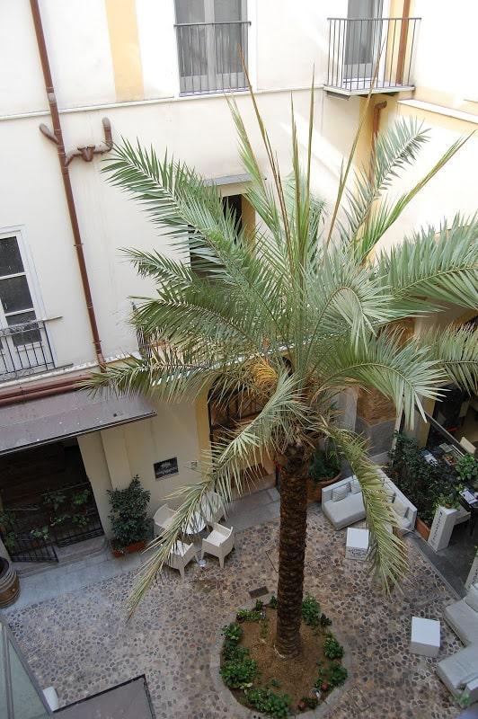 Палермо - Вид из окна хостела.