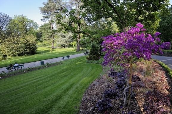 Не оставит равнодушными Фоджа и любителей природы: в Ботаническом саду