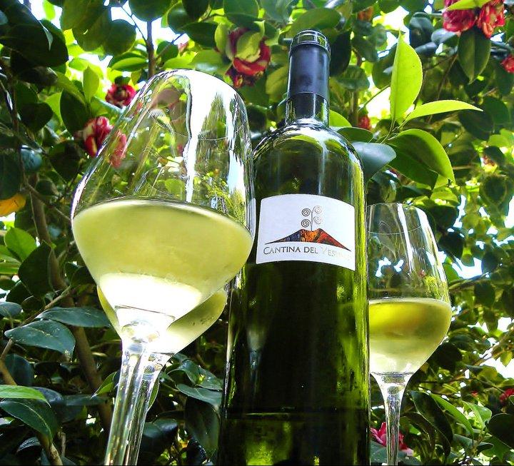 Вино Lacryma Кристи bianco