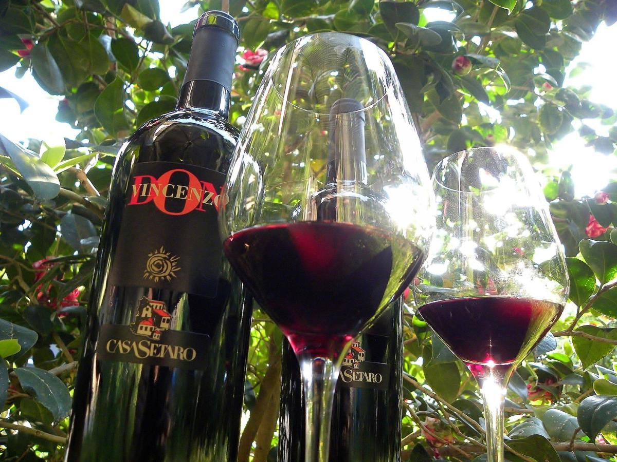 Вино Lacryma Кристи rosso, родившееся на склонах Везувия