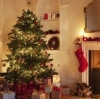 Елка – праздничный новогодний оберег
