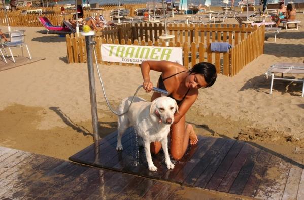 Линьяно Саббьядоро - пляж специально предусмотрен для купания собак