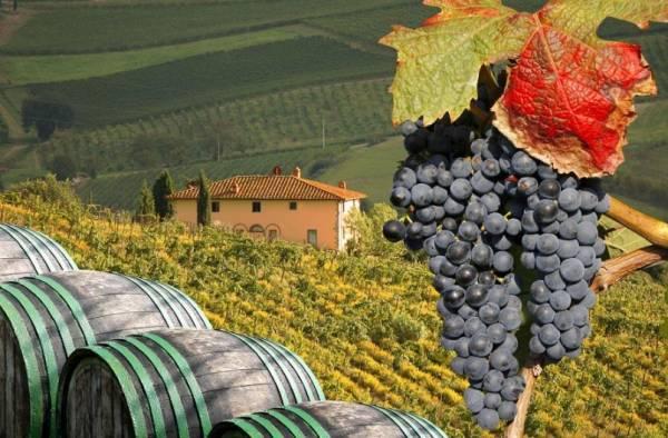 Обязательно побывайте в Тоскане. Италия славится своим вином