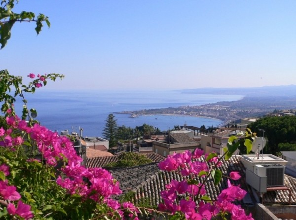 Сицилии- описание и фото Бугенвиллии Таормины